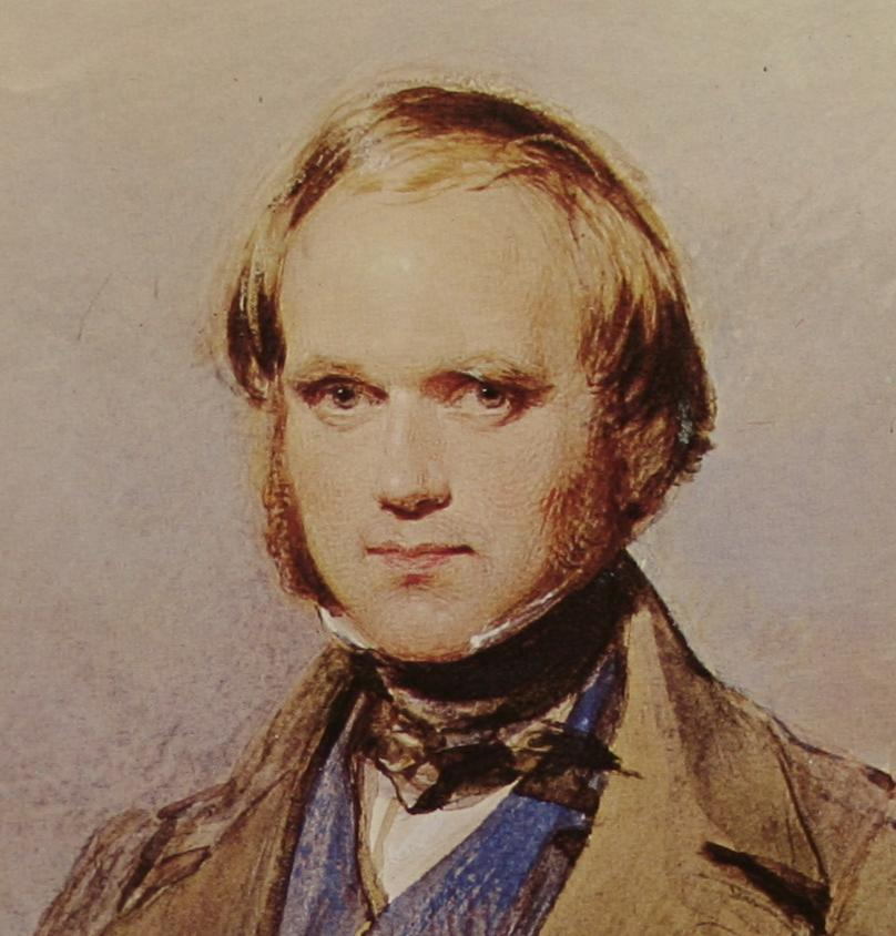 the war between charles darwin and richard owen on the topic of evolution Between 1860 and 1868, the life and work of charles darwin from orchids to variation continued with research and experimentation on evolution, carrying out tedious.